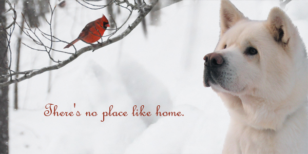 Theres No Place Like Home Final 300X600